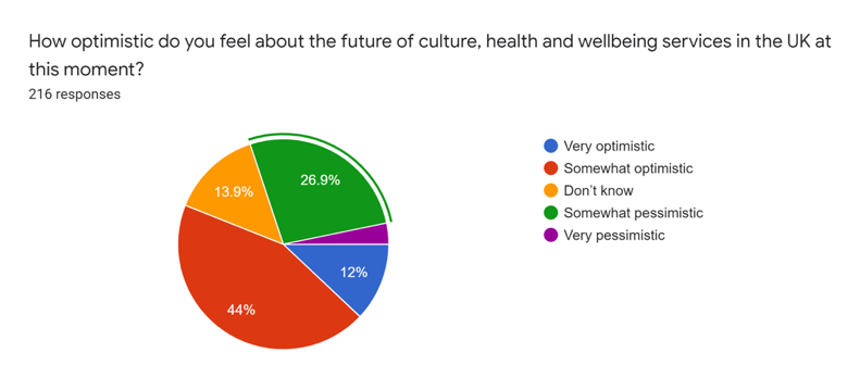 pie chart showing responses, the biggest section being somewhat optimistic at 44%
