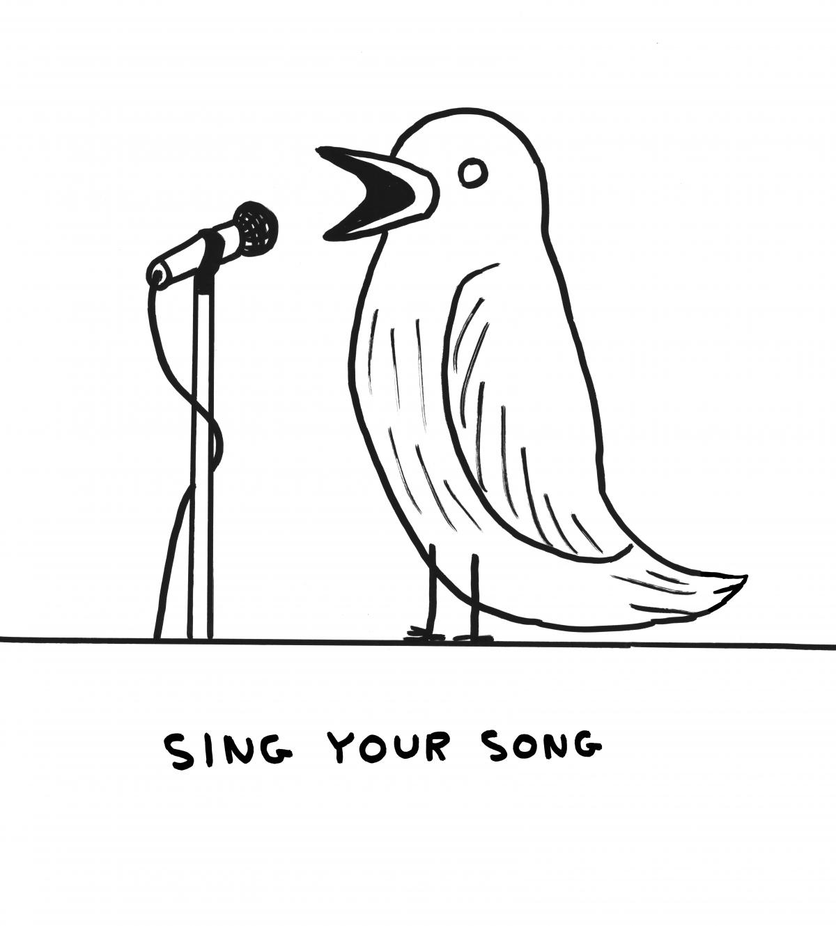 Shrigley bird singing